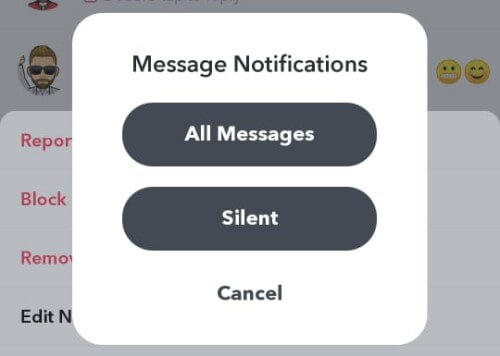 Snapchat Mute Message Notifications