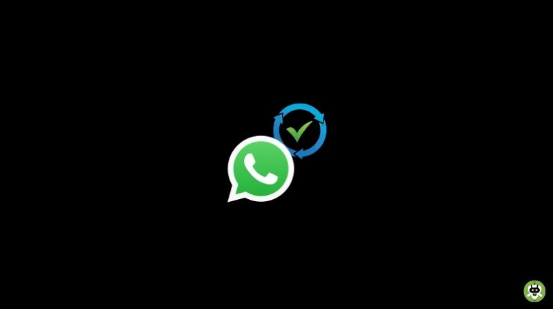 How To Recover Deleted WhatsApp Chat? [Guide]