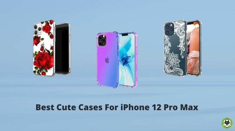 Best Cute Cases For iPhone 12 Pro Max